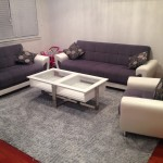 Danville-Upholstery-Cleaning
